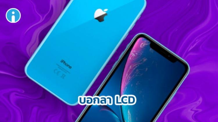 iPhone XR รุ่นปี 2019 นี้ จะเป็นรุ่นสุดท้ายที่ใช้หน้าจอ LCD