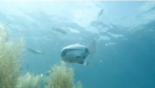 BIKI โดรนใต้น้ำแบบไร้สาย สุดน่ารัก