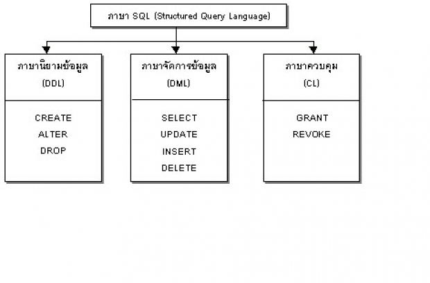 รู้จัก Data Manipulation Language